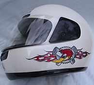 Woodpecker graphics on helmet